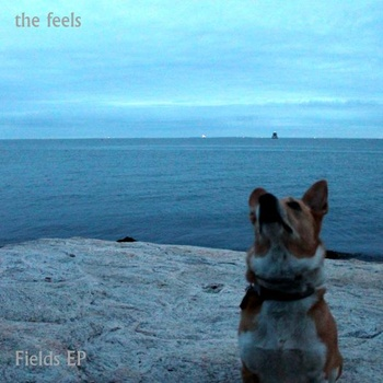 Fields Album